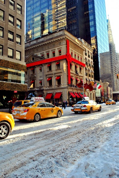Snow Storm Blankets New York